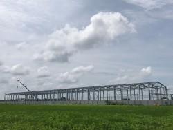 C-Line 雞舍鋼結構組裝(彰化二林)