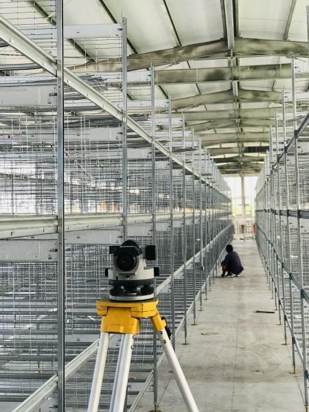 FACCO C5直立式蛋雞籠成套設備安裝(彰化芳苑鄉)
